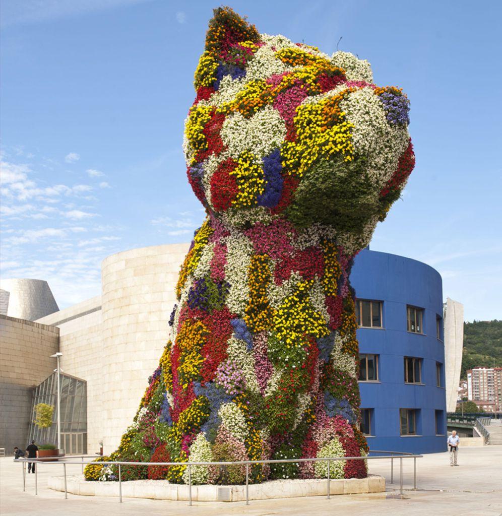 Sprachkurse in Bilbao Spanien (Puppy in Bilbao)