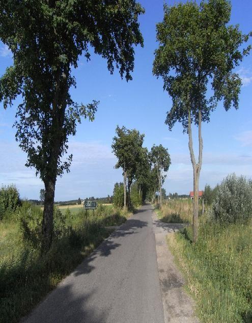 Die weite, unverstellte, fast menschenleere Landschaft Pommerns eignet sich sehr gut für Fahrrad Ausflüge während Ihres Polnisch Sprachkurses in Kolberg